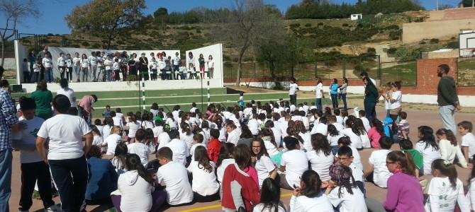 26 Febrero de 2015 Celebración Día de Andalucía